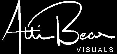 AttiBear Visuals